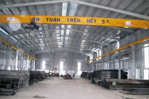 Single girder crane 5 tons